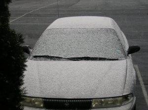 snow-11302008-1