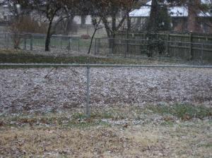 snow-11302008-21